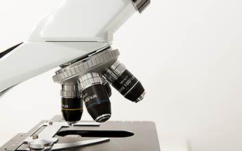 Microscopio con muestras
