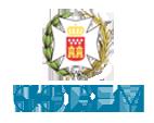 Logo CODEM